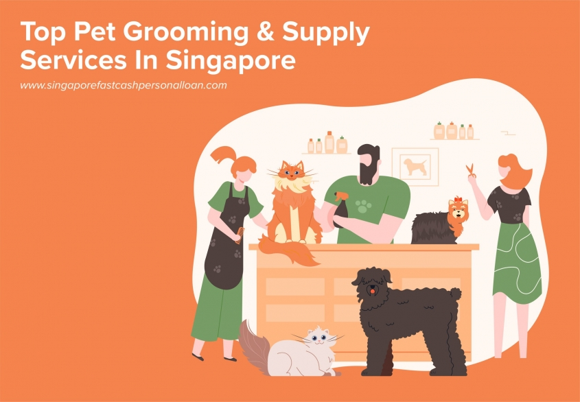 List of Top Pet Grooming & Supply Services in Singapore
